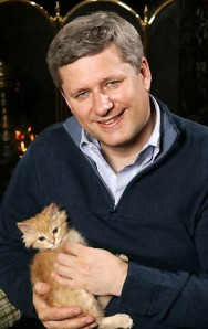 stephen harper kitty